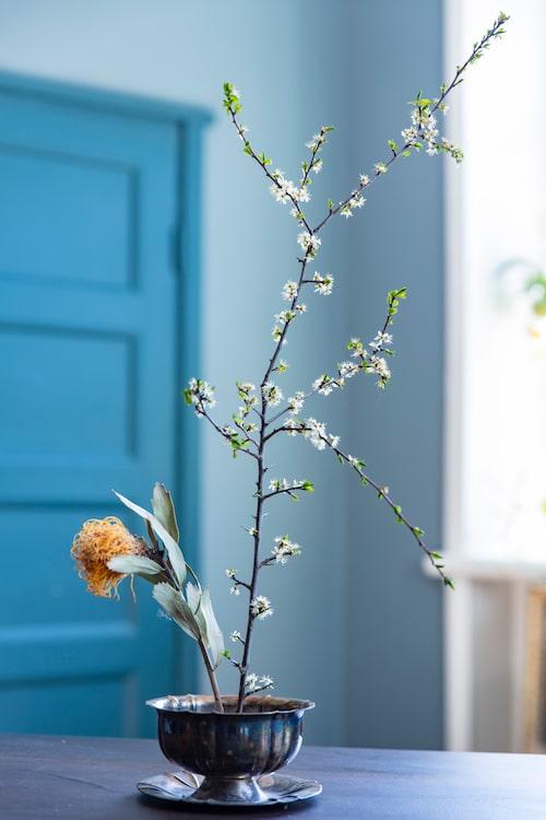 En halvt vissen men fortfarande vacker Protea ihop med en kvist från en slånbärsbuske sitter fast i en blomsterfakir i botten av skålen. Ikebana är en traditionell japanskt konst där man arrangerar blommor eller andra naturliga element. Det gör man genom att ta tillvara på årstiden eller det som fortfarande är vackert, på ett harmoniskt sätt och under meditation. Det gäller att hitta harmoni i sitt arrangemang och att inte överdekorera.