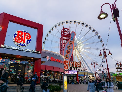 Från Niagara Sky Wheel har man utsikt över de berömda fallen.