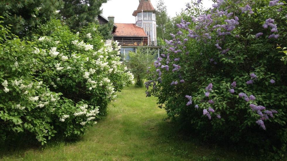 – Man kan forma trädgården till en park, en rejäl trädgård eller sälja delar utav den om så önskas, säger mäklaren Andreas Bergström.