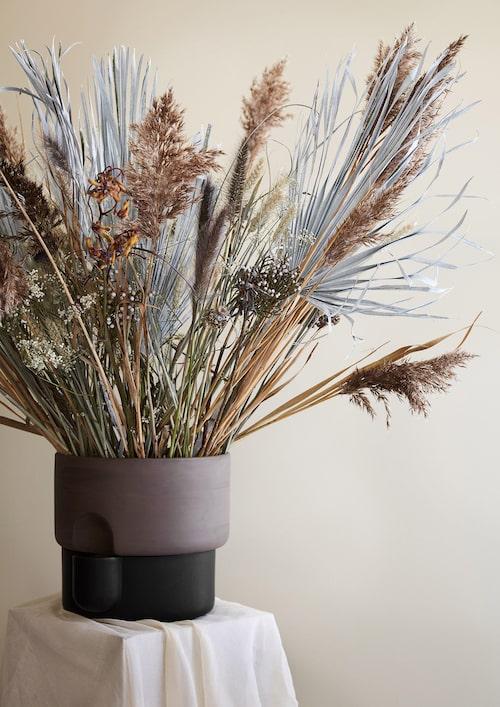 Pampasgräs och andra torkade växter i kruka Oasis L, 1 990 kronor, design Ann Kristin Einarsen för Northern.
