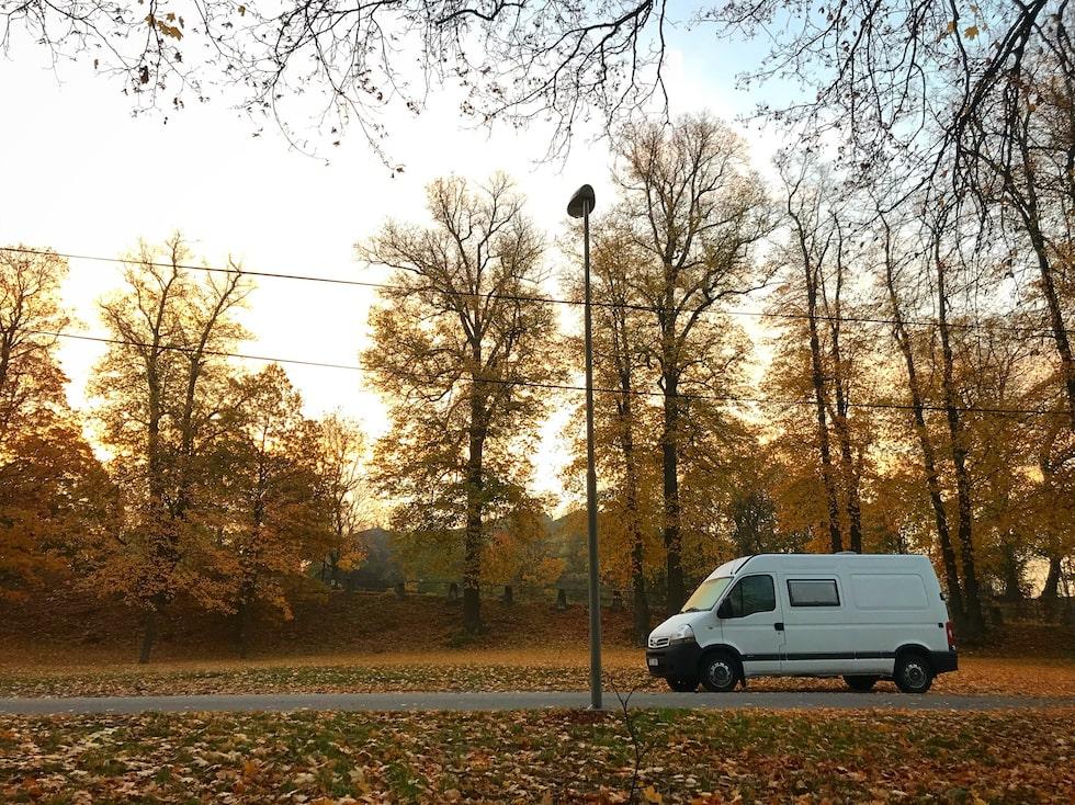 """I Stockholm gillar hon att bo på Lidingö eftersom det finns mycket natur, gratis parkering. """"Och man behöver inte vara rädd. Det känns säkert."""""""