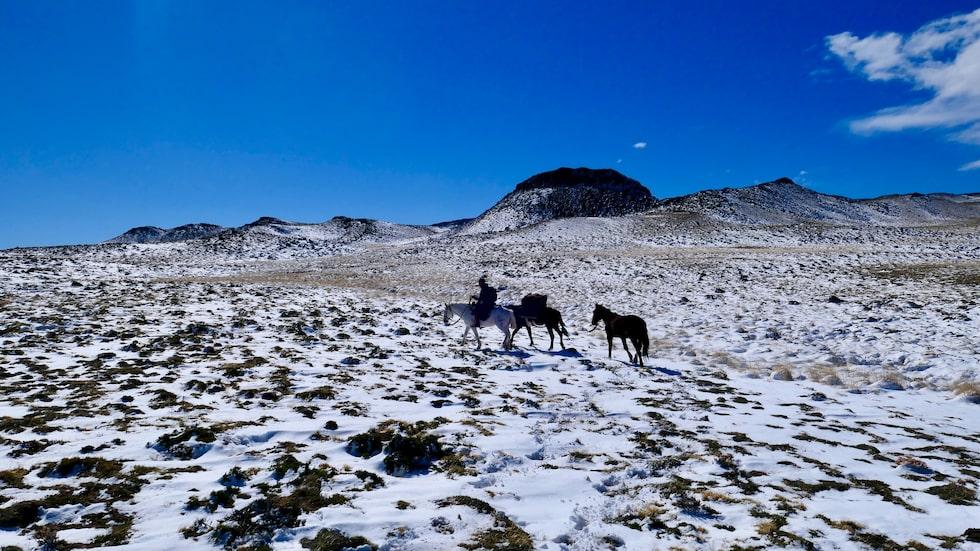 Marcus kunde ingenting om hästar innan sin ridtur genom Patagonien.