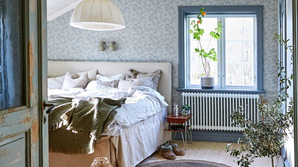 Rätt växter i sovrummet kan påverka din sömn på flera sätt.