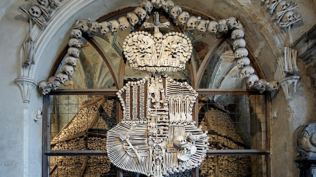 40 000 pestoffer tjänar som dekoration i kyrkan i Kutna Hora.