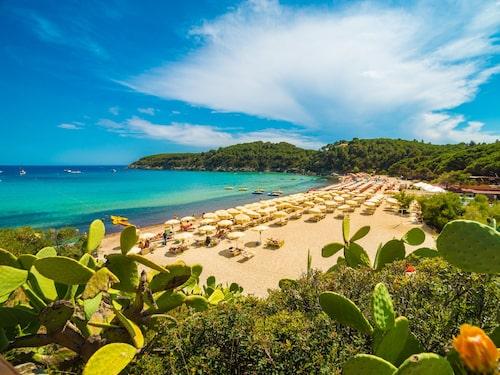 Stranden Fetovaia på Elba i Italien ståtar med turkosblått vatten.