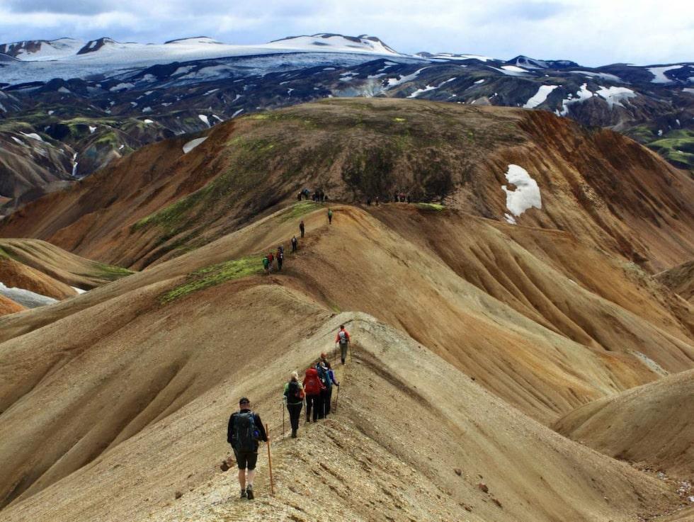 Gå vandringsleden Landmannavegur till Landmannalaugar.