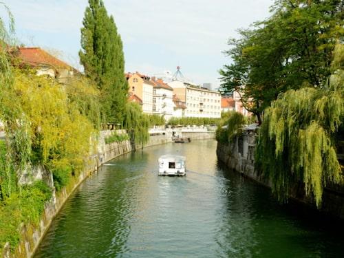 Ljubljana påminner om Amsterdam med alla som cyklar och åker båt.