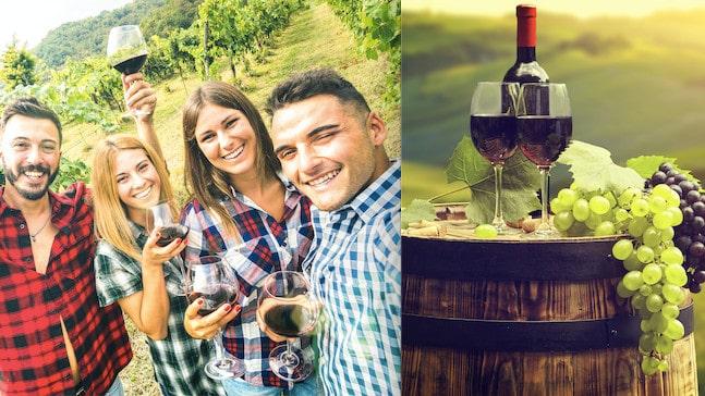 Vad vet du om Toscanas viner?