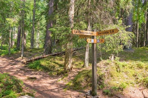 47 kilometer långa Tiveden anses vara en av Sveriges mest spektakulära leder.