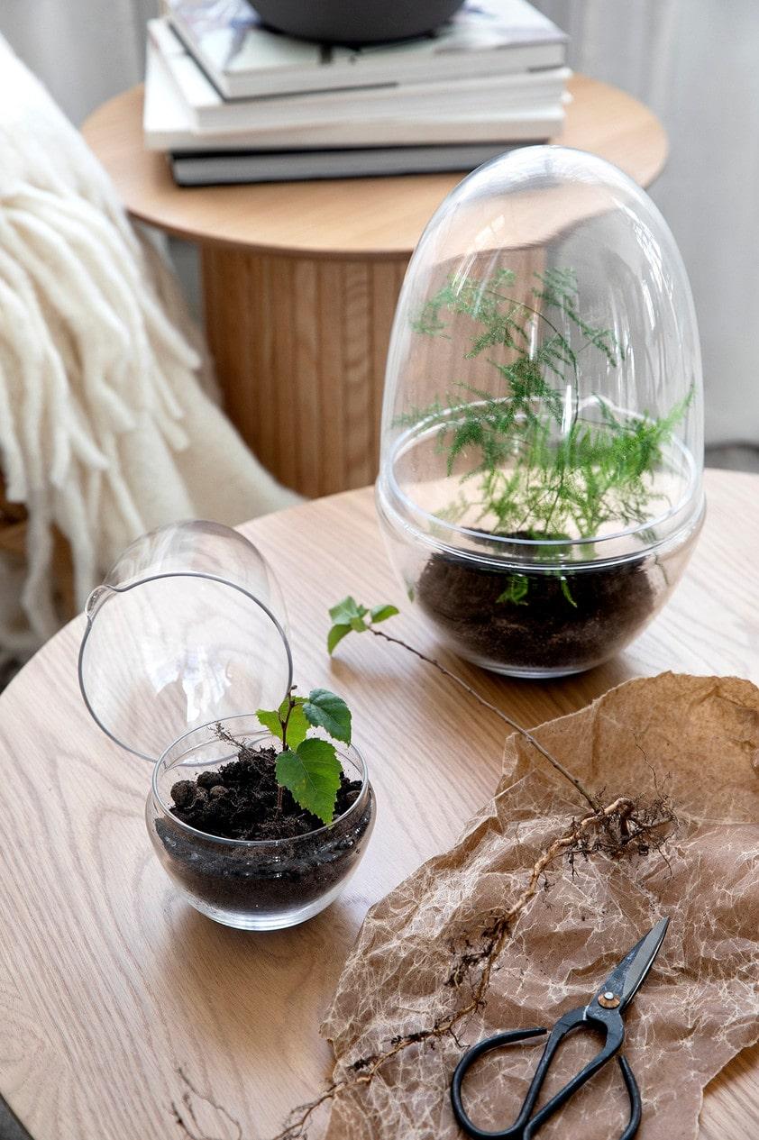 Odla inomhus i små växthus, från Åhléns.