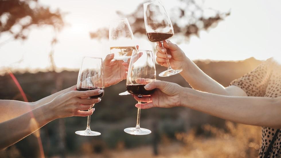 Njut av goda prisvärda viner i sommar.