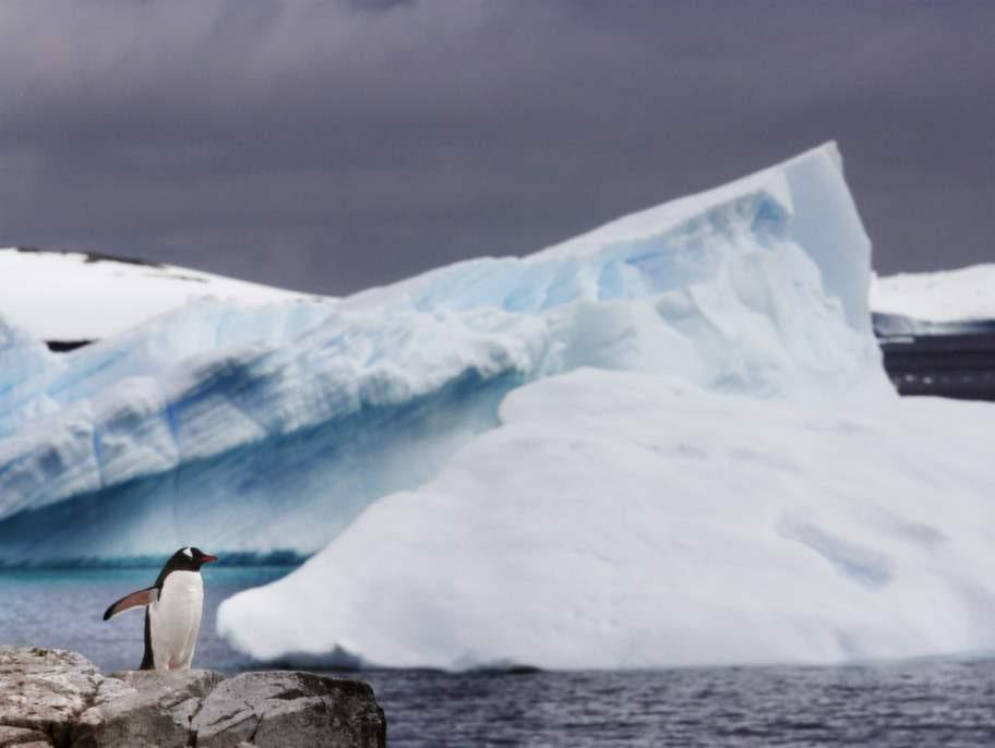 Paradise Bay. Som namnet antyder är bukten vanvettigt vacker med vita isberg som stupar rakt ned i det blå vattnet.