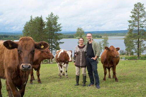 Johanna och Pär Hellström på Svedjan Ost i Kåge, utanför Skellefteå.