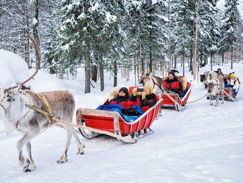 Slädtur bakom renar i Rovaniemi.