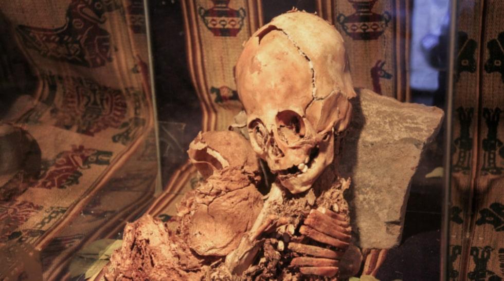 <p>Mumier och skelett på en av Perus många museer</p>