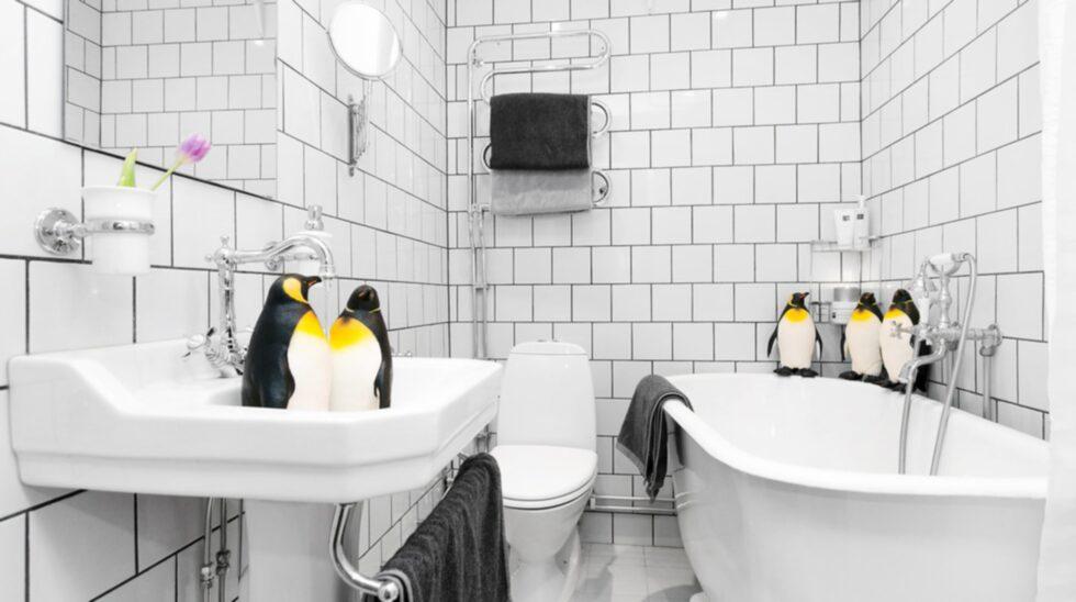 Här är lägenheten som ska säljas med hjälp av en drös pingviner. Klicka vidare för att se vad de hittar på och scrolla ner för att se fler annorlunda stylingknep.