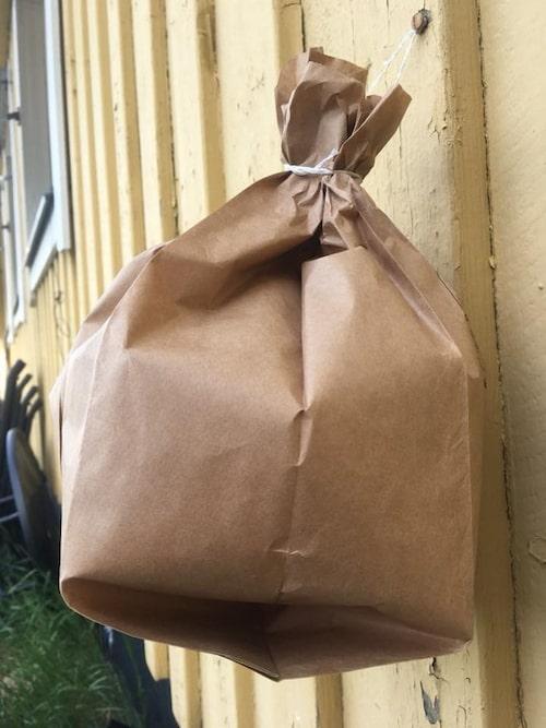 Hänger du upp en brun pappåse vågar sig inte getingarna ens fram –de tror nämligen att det är ett annat getingbo.