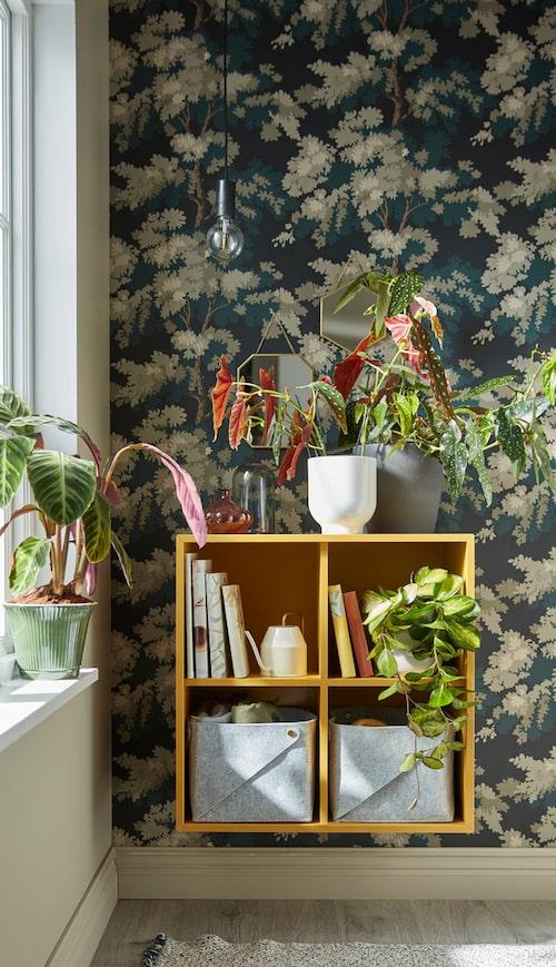 Skapa mer plats för dina växter med vägghängda skåpet Eket.