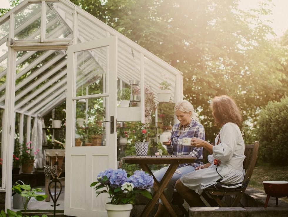 Vill du ha plats för arbetsbänk, bord och stolar eller använda växthuset för att förlänga trädgårdssäsongen kan ett större växthus passa bättre.