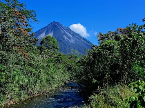 I parken Arenal Volcano National Park finns det bland annat finns 850 fågelarter.
