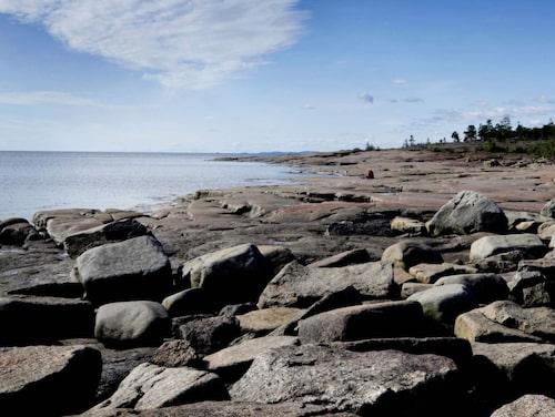 Naturreservatet Rotsidan är en annorlunda badplats.